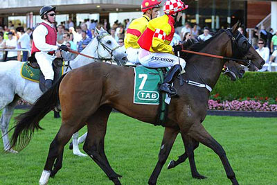 Randwick Winners circle for Edinburgh Park Thoroughbred Stud horse Rose of Cimmaron