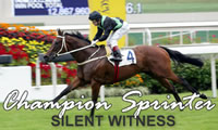 SILENT WITNESS Champion Sprinter in Hong Kong