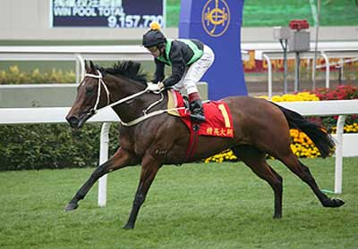 SILENT WITNESS wins Bauhinia 